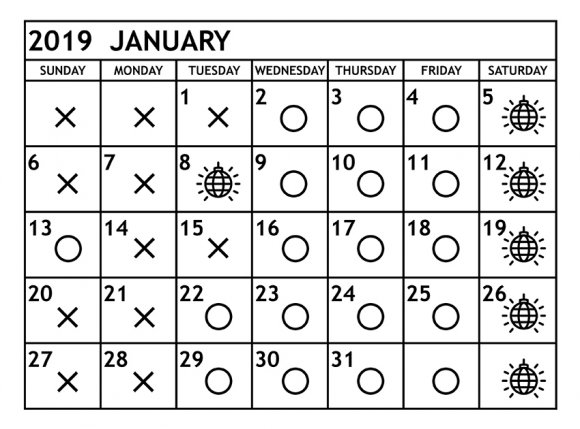 2019年1月 音溶営業日