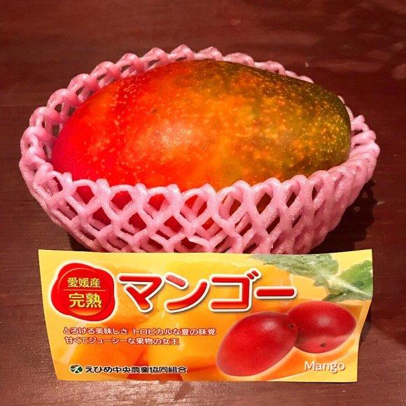 本日★8/24(土)D-FUNK SUMMER