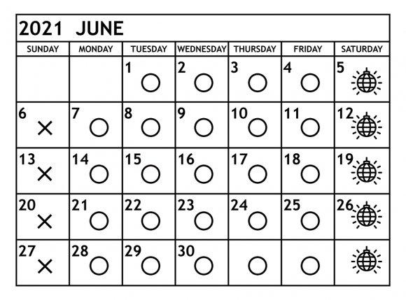 6月の営業予定日