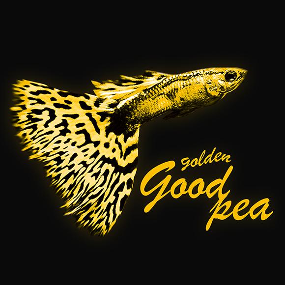 golden goodpea (ゴールデン・グッピー)